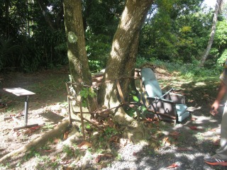 An Outside Sitting Area for the Elderly