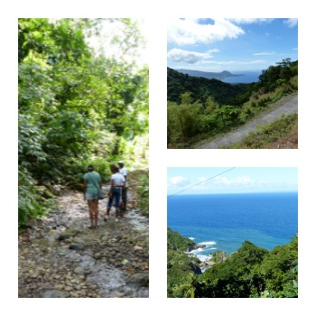 Picturesque Dominica